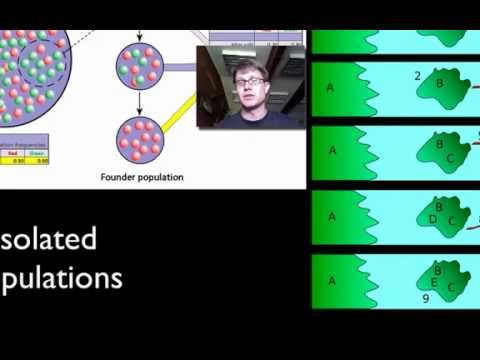 003 genetic drift bozemanscience
