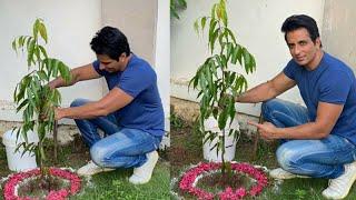 Actor Sonu Sood Accept Green India Challenge | TFPC - TFPC
