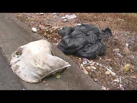 Buscan a personas que lanzaron desechos desde un vehículo en una zona pública