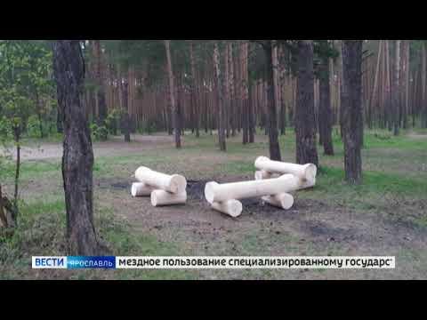 В Ярославле въезд на Прусовские карьеры вновь сделали платным