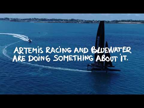 Bluewater Supporting Sweden's Artemis Racing Team