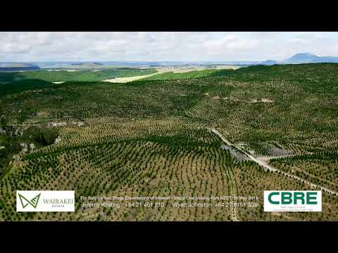 CBRE Agribusiness: Wairakei Estate Forestry, Central North Island, New Zealand