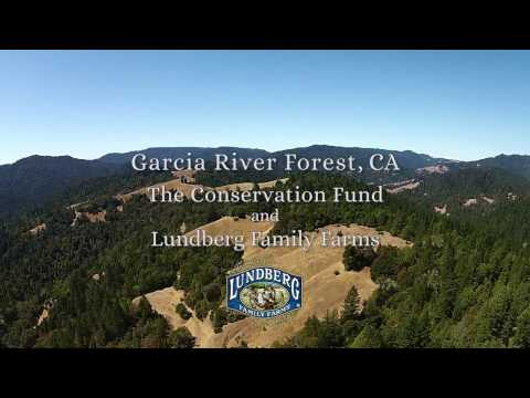 Garcia River Forest - Lundberg Family Farms & The Conservation Fund