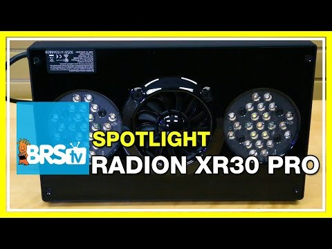 Spotlight on the Radion XR30 PRO LED | BRStv