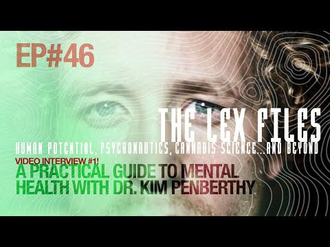 Video Interview #1! A Practical Guide to Mental Health with Dr. Kim Penberthy | Ep. 46 | The Lex Files