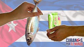 ¡VIVIENDO EN LA COMUNIDAD PRIMITIVA! Los cubanos acuden a trueque para poder subsistir