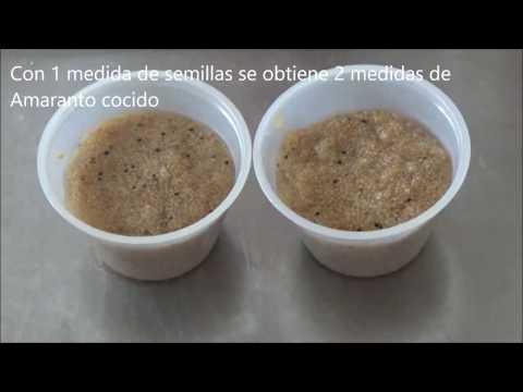 Como Cocinar El Amaranto | Download Youtube Mp3 El Amaranto Reemplaza El Arroz Mira Mas