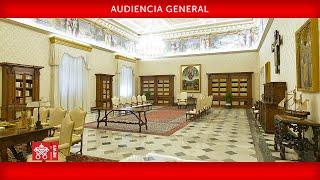 Audiencia General 27 mayo 2020 Papa Francisco