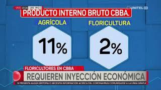 Floricultores, en Cochabamba, lucha contra los efectos negativos de la pandemia del Covid-19