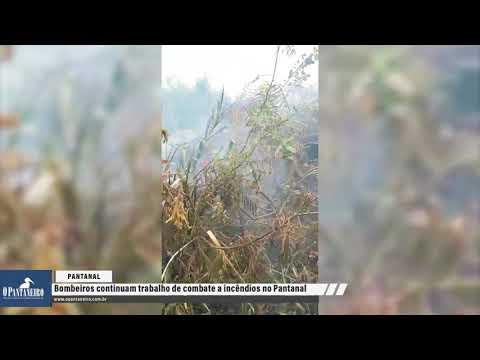 Bombeiros continuam trabalho de combate a incêndios no Pantanal