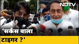 Madhya Pradesh: कौन साबित होगा Tiger ? - NDTVINDIA