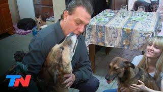 Grandes historias mínimas de la vida en cuarentena: se quedó sin trabajo y salva perritos