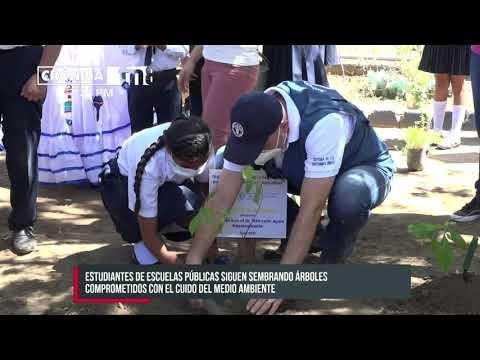 Representante de la FAO en Nicaragua se suma a siembra de árboles en colegios