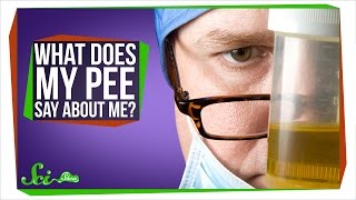 What Does My Pee Say About Me?