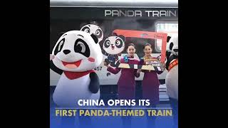Take a ride on China's new panda-themed train