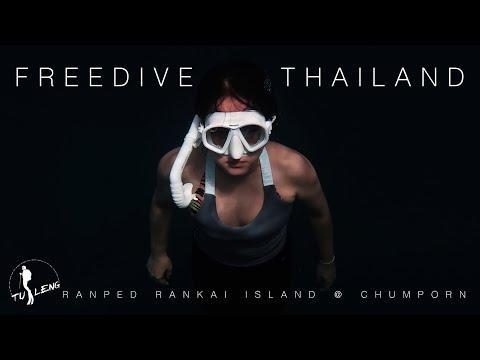 Freedive-Thailand-ดำน้ำดูฉลามว