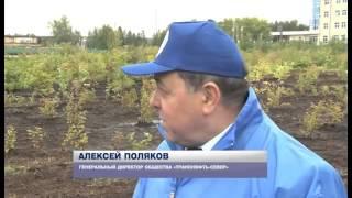 Ухтинское телевидение об открытии сквера. Поздравления ухтинцев АО