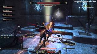 The Elder Scrolls Online High-Level Dungeon Battle