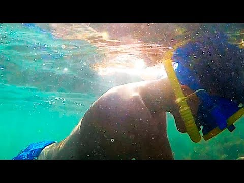 Подводные съемки (рабочие моменты)...