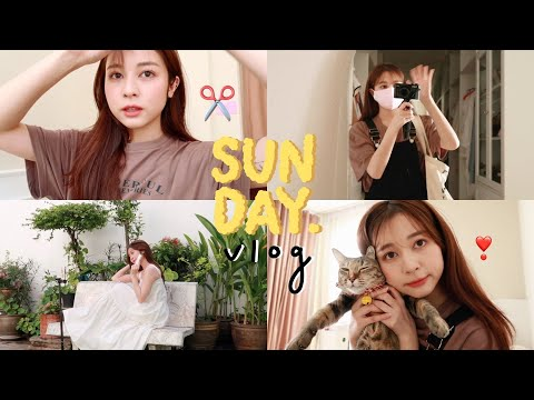 🍫-sunday-vlog.-1-วันพักผ่อนทำอ