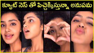 Cute Video : Anupama Parameswaran Singing A Song | Actress Anupama Latest Video | Rajshri Telugu - RAJSHRITELUGU