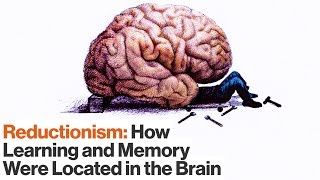 How Reductionism Uncovered Secrets of Long-term and Short-term Memory | Eric Kandel