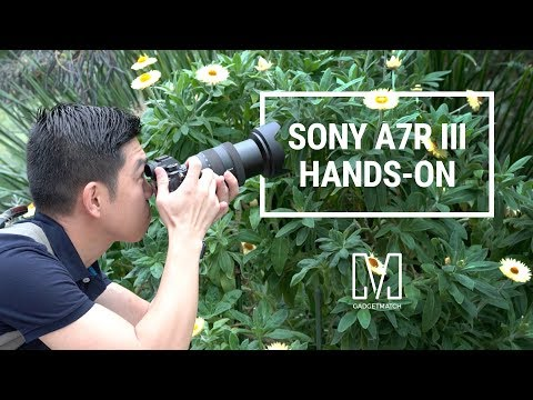 Sony A7R III Hands-On: New king of full-frame photography