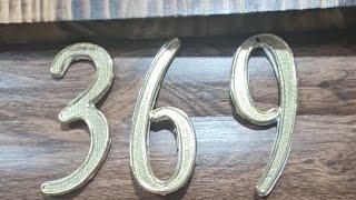 369 DE TESLA GATICO VIP#1  24.01.2021