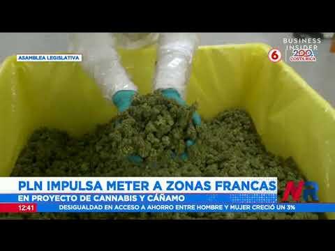 PLN impulsa meter zonas francas en proyecto de cannabis y cáñamo