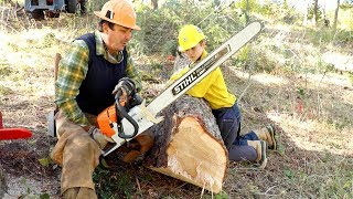 How To Work With Chainsaws Tutorial