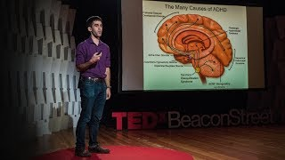 What we'll learn about the brain in the next century | Sam Rodriques