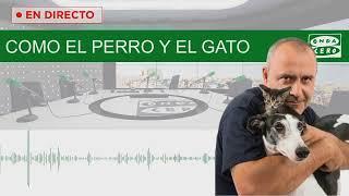 EN DIRECTO: Como el Perro y el Gato