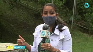 Costa Rica Noticias - Edición meridiana 12 de mayo del 2021