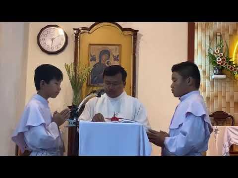 Bài giảng hành hương Kính Đức Mẹ Hằng Cứu Giúp thứ bảy tuần XIV TN 11.07.2020
