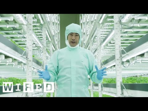 connectYoutube - Tokyo's Vertical Farms - The Future of Farming | WIRED