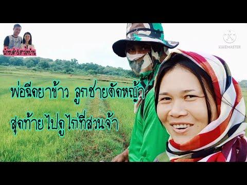 ชีวิตติดเกษตร-ไปนาตัดหญ้า-ฉีดย