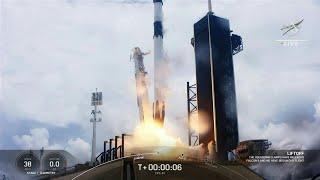 Pour une expérience, SpaceX lance des calamars vers la Station spatiale internationale | AFP Images