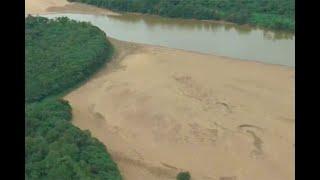 Deforestación en Caquetá preocupa a autoridades - Noticias Caracol