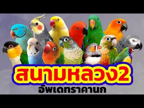 #สนามหลวง2-#อัพเดทราคานก-#โซนส