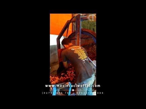 Mesin Pencuci Wortel & Jahe Kapasitas Besar