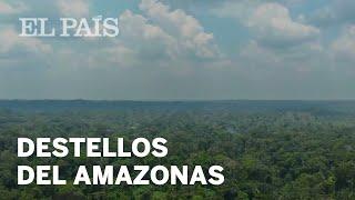 Los pueblos yanomamis se defienden | Planeta Futuro