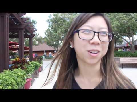 A Walt Disney World Dream-cation-Day 1-Travel
