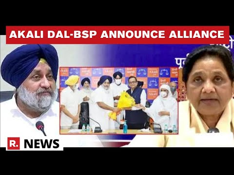 Punjab Assembly Elections: SAD & BSP Officially Announce Alliance, Seat-sharing Formula