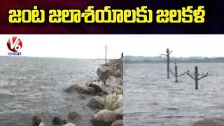 జంట జలాశయాలకు జలకళ : Huge Inflow To Gandipet And Himayat Sagar Lakes | V6 News - V6NEWSTELUGU