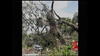 Municipal Police Vehicles Damaged By Fallen Tree