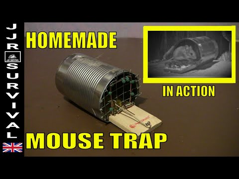 Homemade Humane Mouse Trap