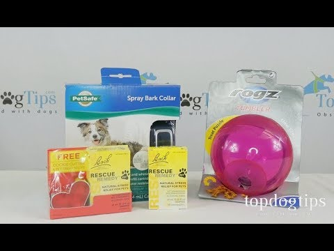Dog Separation Anxiety Prize Package Giveaway