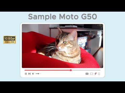 Test di ripresa da Motorola Moto G50 in  …