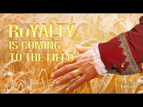 Royalty is coming to the field