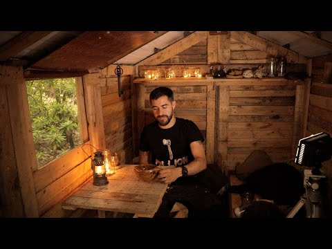 Off Grid Cabin: Alone in the Woods - One Million Subscribers